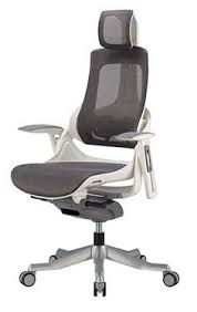 white frame office chair. The Raynor Group - Wau White Frame/Charcoal Mesh 3/4 Front. Front ElevationBarber ChairErgonomic Office Frame Chair H