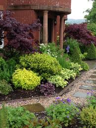 Small Picture Mixed plants shrubs border Lookit that Johnsons Blue hardy