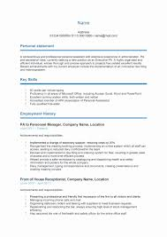 Cute Professional Curriculum Vitae Template Doc Contemporary