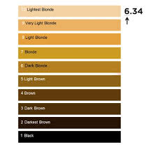 Dark Brown Red Hair Color Chart Guide To Blonde Hair Shades Expert Advice Loreal