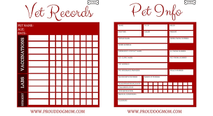 Printable Dog Vaccination Chart Free Download Printable Vet Records Keeper