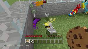 Why You Shouldn't Feed Parrots Cookies In Minecraft - YouTube