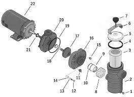similiar sta rite pump repair parts keywords sta rite dura jet pump js series replacement part schematic