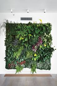 plant wall decor beautiful decorative wall mirrors