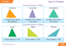 Triangle Types Chart Learnhive Icse Grade 5 Mathematics Triangles Lessons