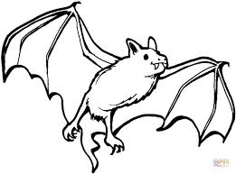 Small Picture Bat and Spiders coloring page Free Printable Coloring Pages