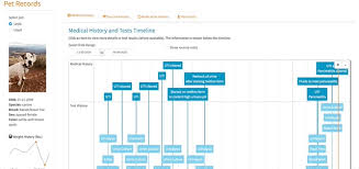 Project Timeline Beauteous A Shiny App To Visualize And Share My Dogs' Medical History