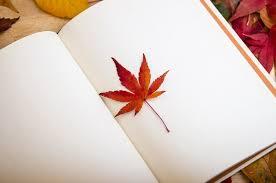 essay on doctor in hindi यदि मैं डॉक्टर होता  essay on book in hindi पुस्तक पर हिन्दी निबंध
