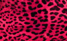 Leopard Print Wallpaper For Bedroom Animal Print Wallpaper Bedroom