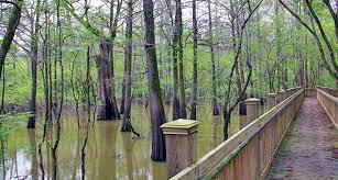 Zillow has 9 homes for sale in humphreys county ms. Humphreys County Mississippi Rivers Lakes Streams