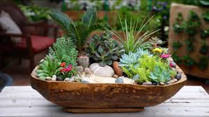 antique dough bowl turned succulent planter garden answer