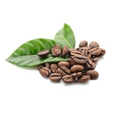 coffee beans. Delighful Coffee Home  Dramanti Coffeebeansfreepngimage1 For Coffee Beans