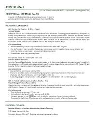 key accomplishments resume examples resume key achievements key accomplishments resume examples professional nursing resume getessayz images professional nursing resume