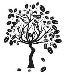 coffee plant illustration vector. Simple Coffee Coffee Tree Vector Illustration To Plant Illustration Vector T