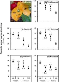 Feeder Insect Nutritional Value Chart Manipulation Of Plant Primary Metabolism By Leaf Mining