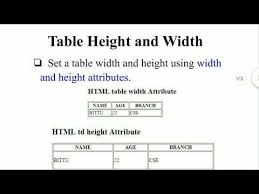 table height and width in html tamil