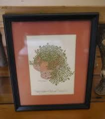 Vintage 1975 WENDY WHEELER Baby's Tears Helxine Soleirolii Print Matted  Framed | Sale artwork, Printed mat, Frame