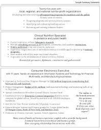 Summary For Resume Examples Enchanting Experience Summary In Resume Examples Summary Resume Samples Summary