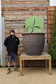 large old stone planter pots