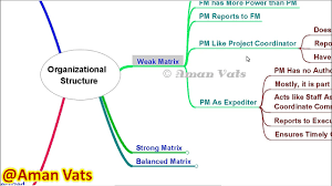 Chipotle Organizational Structure Chart Mind Map Organization Structure As Per Pmbok Pmp