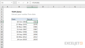 How To Use The Excel Year Function Exceljet