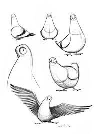 Pigeon Drawing Simple Google Search 素材 Character Design