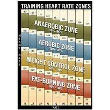 Heart Rate Activity Chart Training Heart Rate Zones Chart Modern Poster 13 X 19in