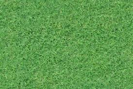 seamless grass texture for free download seamless grass texture game59 grass