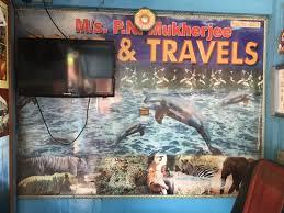 p n mukherjee tour travels badasirei m s p n mukherji tour travels travel agents in puri justdial