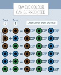 Eye Color Probability Chart Eye Color Probability Chart 9gag