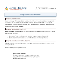 Resume Summary Samples Adorable 60 Career Summary Examples PDF