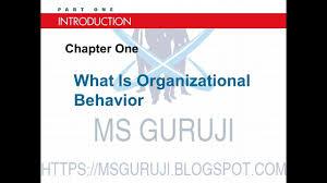 What Is Organizational Behavior What Is Organizational Behavior Chapter 1