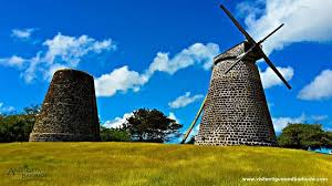 Betty's Hope Sugar Plantation, St. John's, Antigua - Review of ...