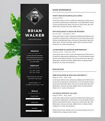Bold Resume Template Commily Com