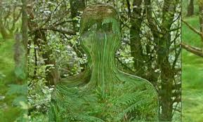 Image result for camouflage alien
