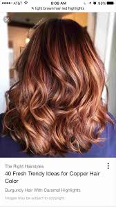 Light Copper Red Hair Red Hair To Light Brown Pogot Bietthunghiduong Co