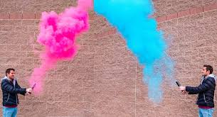 gender reveal smoke powder cannons