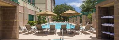 embassy suites tampa usf near busch gardens hotel outdoor pool