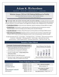 value statement examples for resumes ceo coo sample resume executive resume writer sacramento
