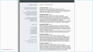 Pages Resume Template Free Professional Resume Templates For Pages
