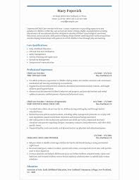 Child Care Resume Template Adorable Child Care Provider Resume Template For Microsoft Word LiveCareer
