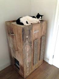 Decorative Cat Litter Box Litter Box With Cover Cat Litter Box Enclosure Ideas 32