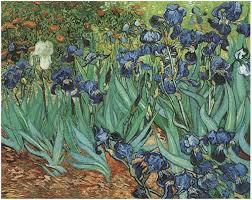 image only van gogh irises