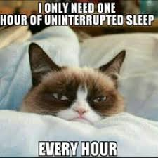 grumpy cat birthday quotes. Plain Birthday Grumpy Cat Quotes  Birthday Image Sense On I