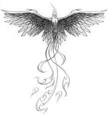 Drawings Of Phoenix 552 Best Phoenix Birds Images Tattoo Phoenix Phoenix Drawing