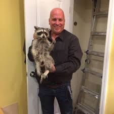dq pest control reviews. Brilliant Control Photo Of DQ Pest Control  Hempstead NY United States Critter Nabbed Throughout Dq Reviews D