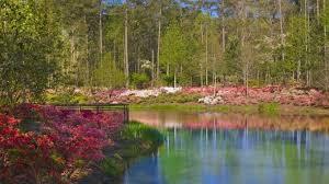 callaway gardens ga azaleas