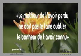 Citations Proverbes Sur âme Sœur Citation Sur Le Bonheur Perdu