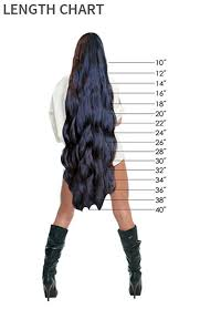 Lace Wig Hair Length Chart California Wigs