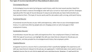 Artist Resume Skills D Artist Resume Makeup Resume Skills